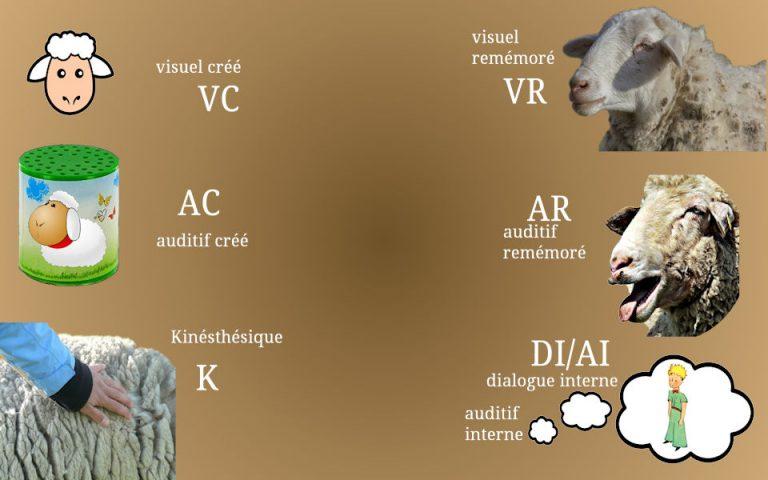 Exemples de lecture des indices/accès oculaires
