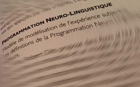 Lexique de PNL